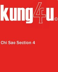 Kung4u - Wing Tjun Chi Sao Sektion 4 in HD